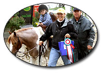 WKM Stables Shows & Events